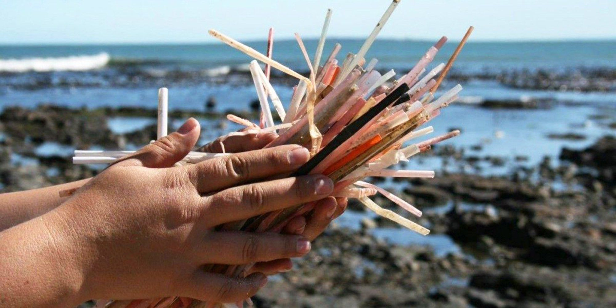 In the USA roughly 500 million plastic straws are used every day