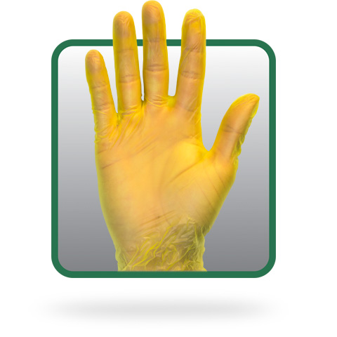 Powder Free Yellow Vinyl Gloves Yellow Latex Free Gloves