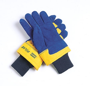 Polar® Insulated Cold Weather Gloves